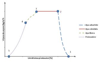 Variaţia vitezei de deshidratare în funcţie de umiditatea produsului